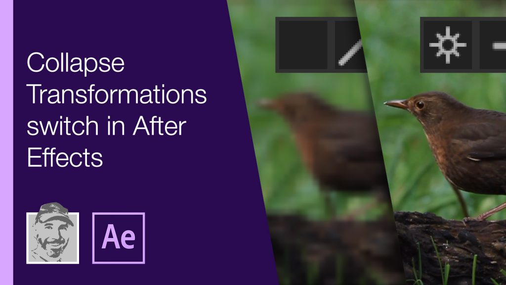 Collapse Transformations switch in After Effects