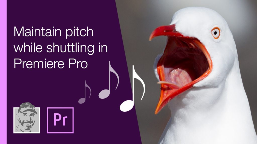 Maintain pitch while shuttling in Premiere Pro