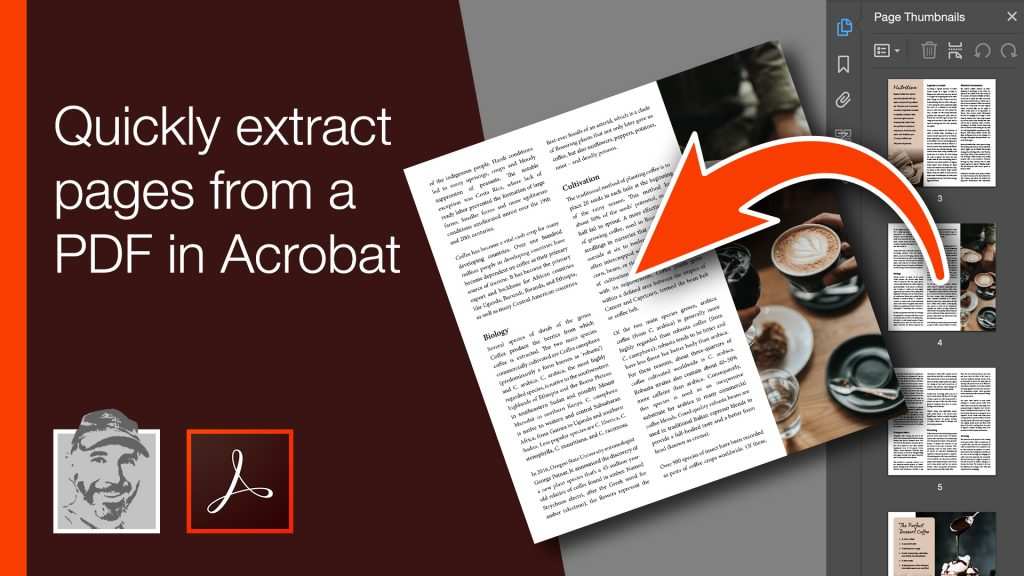 Quickly extract pages from a PDF in Acrobat